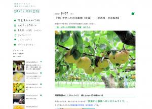 blog-shinohara_2